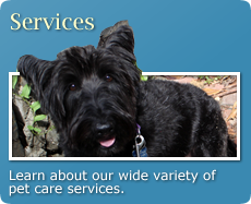 Learn about our wide variety of pet care services.